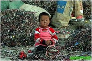 destino residuos informaticos